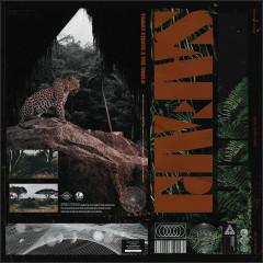 SAFARI - Tommy Strate, Wiz World