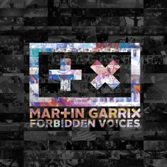 Forbidden Voices - Martin Garrix