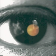 Black Tangerine - David Tao