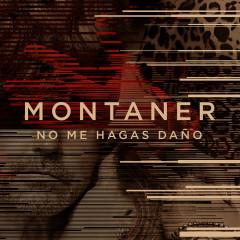No Me Hagas Danõ - Ricardo Montaner