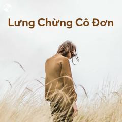 Lưng Chừng Cô Đơn - Various Artists