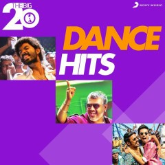 The Big 20 (Dance Hits)