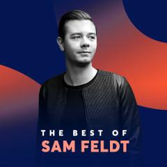 Những Bài Hát Hay Nhất Của Sam Feldt