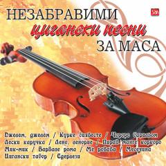 НЕЗАБРАВИМИ  ЦИГАНСКИ ПЕСНИ ЗА МАСА - Various Artists