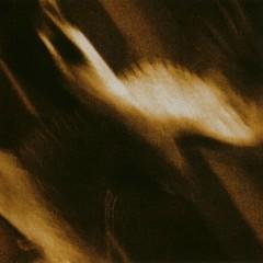 Ashes Against The Grain - Agalloch