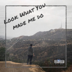 Look What You Made Me Do (Single) - Ty Sciullo