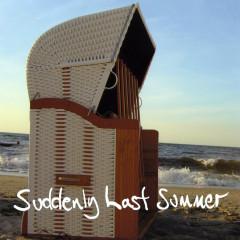 Suddenly Last Summer - Jimmy Somerville