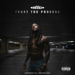 Trust The Process - Ace Hood