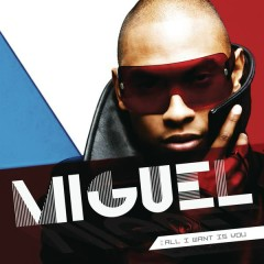 All I Want Is You - Miguel