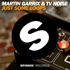 Just Some Loops - Martin Garrix, TV Noise
