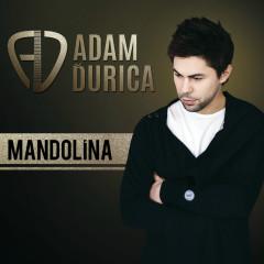 Mandolina - Adam Durica