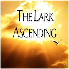 The Lark Ascending - Andrew Davis