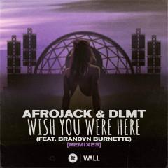 Wish You Were Here (feat. Brandyn Burnette) [Remixes] - Afrojack, DLMT, Brandyn Burnette