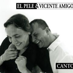 Canto - El Pele, Vicente Amigo