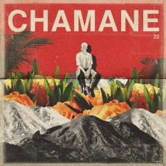 22 - Chamane