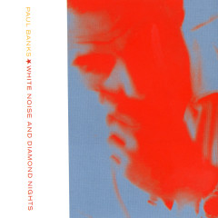 White Noise And Diamond Nights - Paul Banks