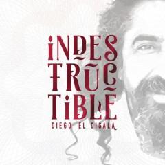 Indestructible: Track by Track - Diego El Cigala