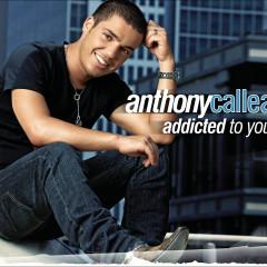 Addicted To You - Anthony Callea