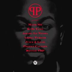 Pleasure P Presents - Various Artists