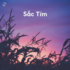 Sắc Tím - Various Artists