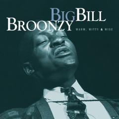 Warm, Witty, & Wise (Mojo Workin': Blues For The Next Generation) - Big Bill Broonzy