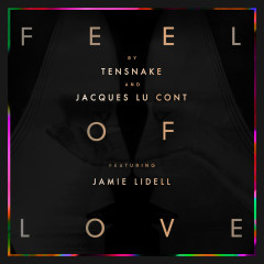 Feel Of Love - Tensnake, Jacques Lu Cont, Jamie Lidell