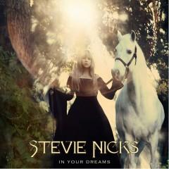 In Your Dreams - Stevie Nicks
