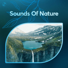 Sounds Of Nature - Various Artists