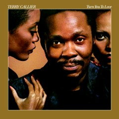 Turn You To Love - Terry Callier