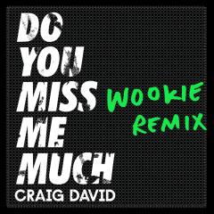 Do You Miss Me Much (Wookie Remix) - Craig David