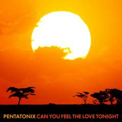 Can You Feel the Love Tonight - Pentatonix
