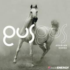 Arabian Horse  - GusGus