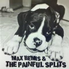 Max Bemis And The Painful Splits (Part1) - Max Bemis