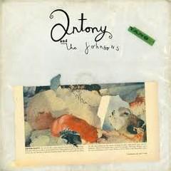 Swanlights - Antony and Johnson