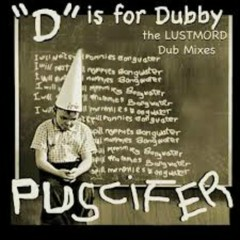 'D' Is For Dubby - The Lustmord Dub Mixes