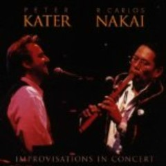 Improvisations In Concert - Peter Kater