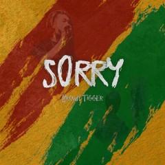 Sorry (Single)