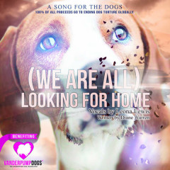 (We Are All) Looking For Home (Single)