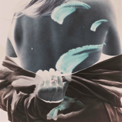 Shadows (Single)