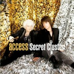 Secret Cluster - Access