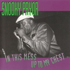 In This Mess Up To My Chest - Snooky Pryor