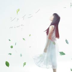 Shiny - miwa