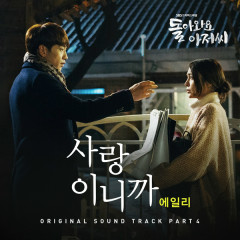 Come Back Mister OST Part.4 - Ailee