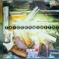 Triggernometry (CD2)