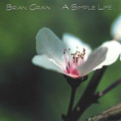 A Simple Life  - Brian Crain