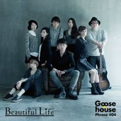 Beautiful Life - Goose house