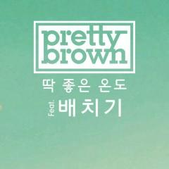 Just The Right Temperature - Pretty Brown