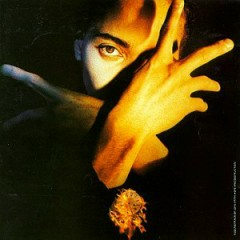 Neither Fish Nor Flesh - Terence Trent D'Arby