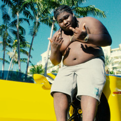 8417 - Young Chop