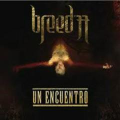 Un Encuentro - Breed 77